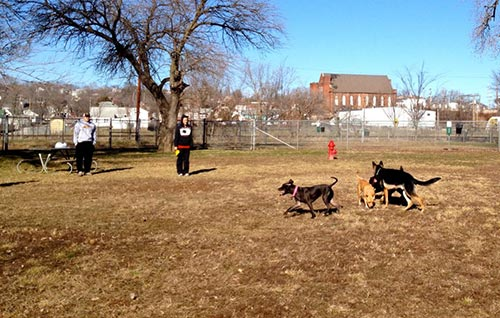 Dempsey Dog Park - No Leash - Hannibal, MO