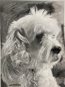 Charcoal drawing 1