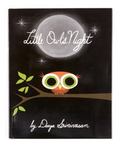 Little Owls Night Book