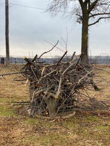 Eagles Nest Kiwanis